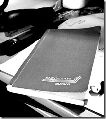 auroranotebook1