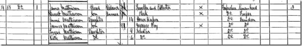 1891 census snip